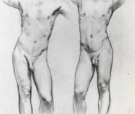 Mannelijk Naakt modeltekenen