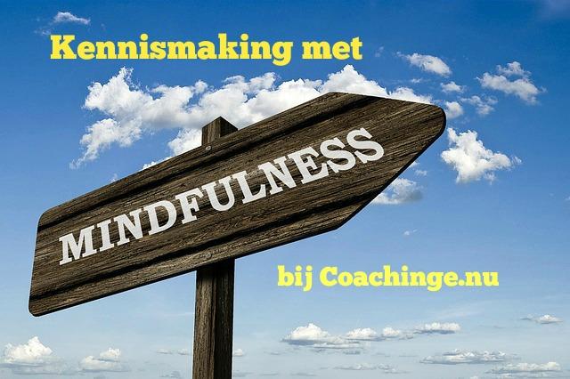 De Workshopsite - Ervaar Mindfulness en stop gepieker