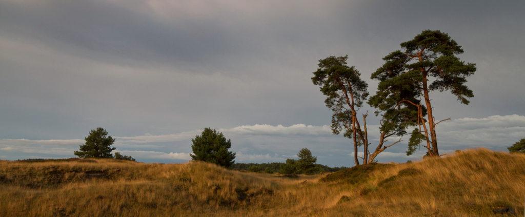 De Workshopsite - Basis workshop landschapsfotografie