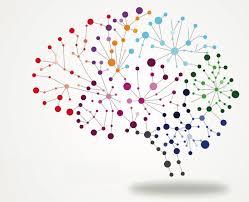 De Workshopsite - Neuroplasticity of the brain
